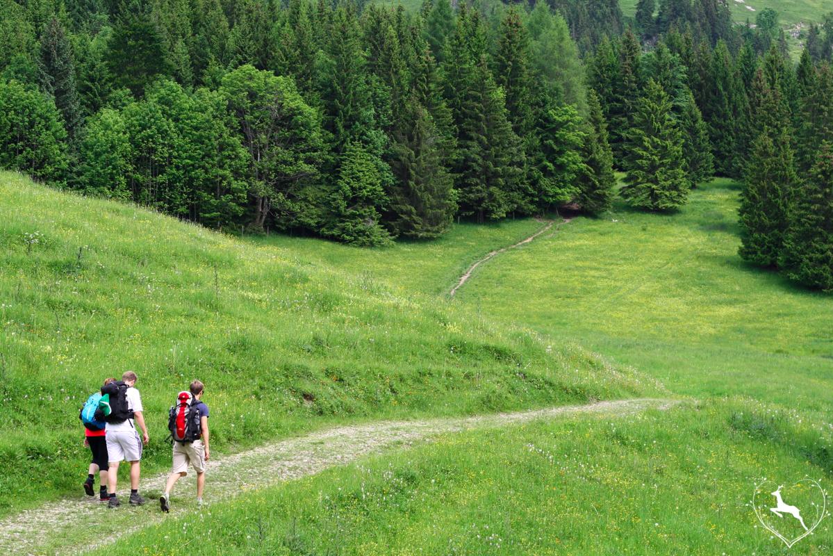 Wanderung auf die Siglhütte