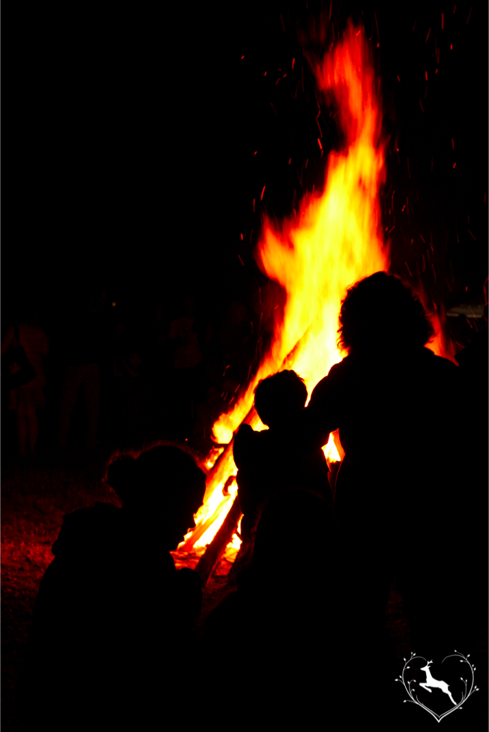 Sommerfeuer in Bayern