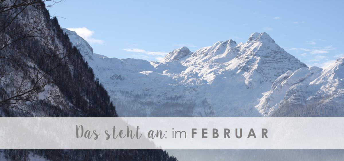 Das steht an: im Februar