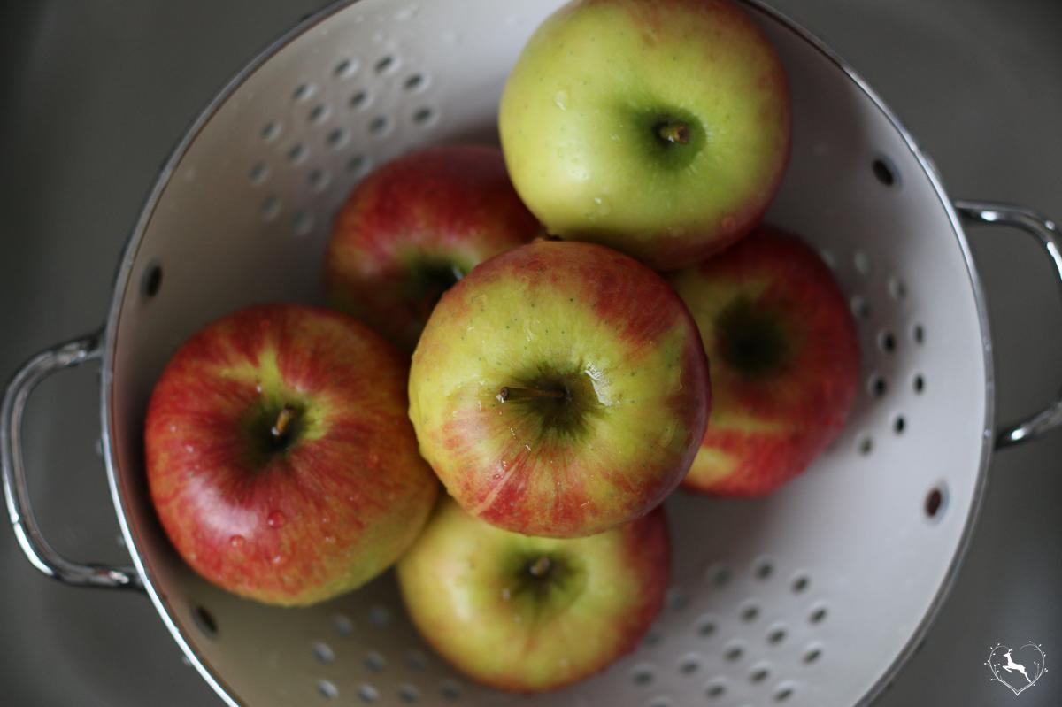 zweischichtiger Apfelkuchen