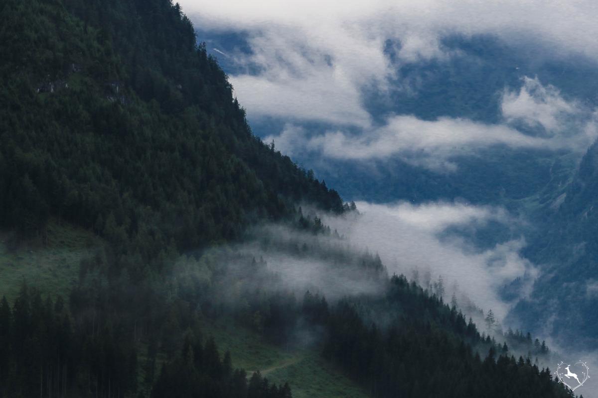 Mountain Weekends