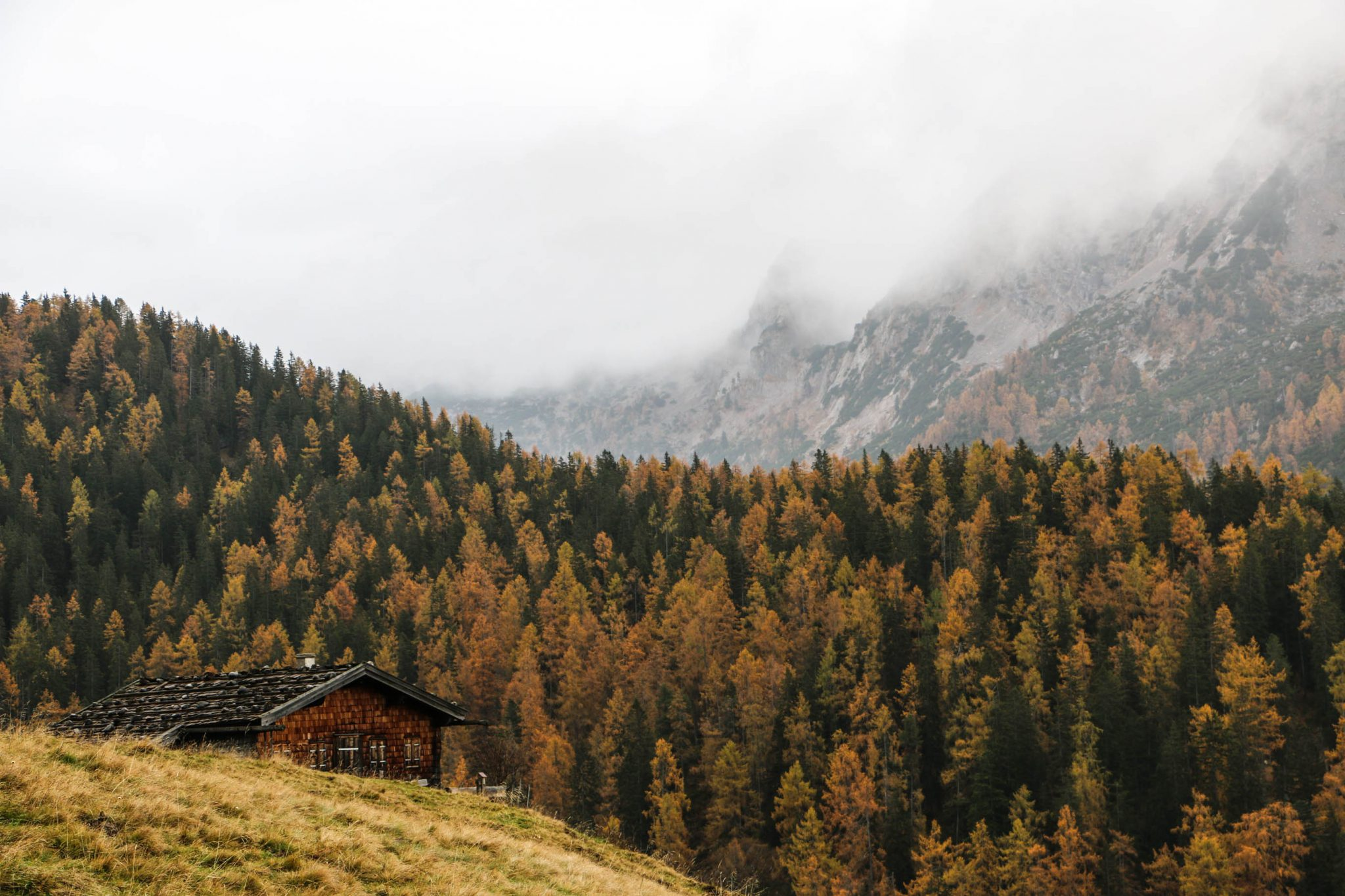 foggy mountainrange with cabin in autumn